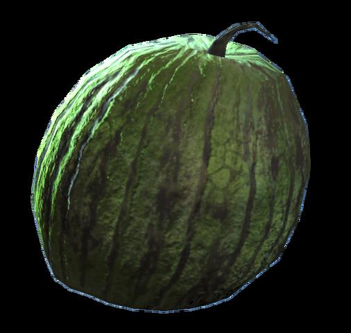 File:Fresh melon.png