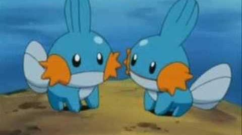 Mudkip The Insane Edition