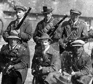 Northern Irish volunteers