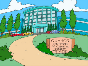Quahog Institute of Cosmetic Surgery