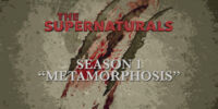 Metamorphosis (The Supernaturals)