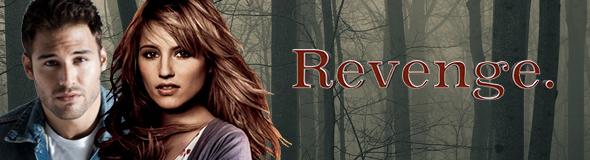 File:Banner Revenge.jpg