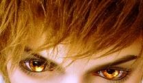 File:Eagle eyes.jpg