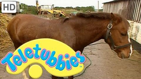 Teletubbies Emily Washing the Pony - Full Episode