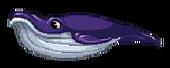 Whale Board