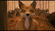 Mrs Fox 1