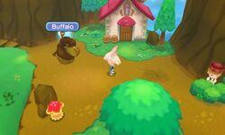 Fantasy-Life-Buffalo