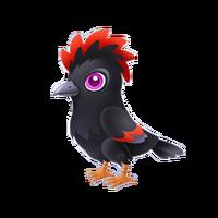 Lost Crow Juvenile