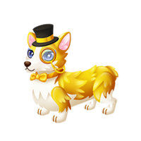 Wealth Corgi Adult