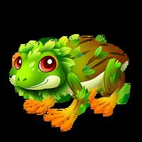 Tree Frog Adult