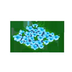 Aqua Azaleas