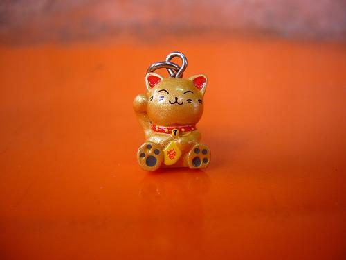 File:Tiny Cat.jpg