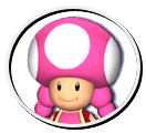 File:Toadetteparty.png