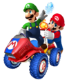 MKTR Mario and Luigi