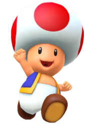 Toad (MP10) 7