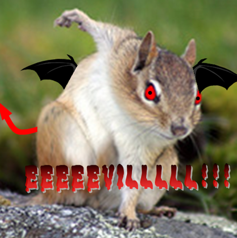 File:Taco The EVIL Chipmunk!.png