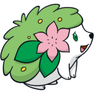 Shaymin Dream