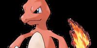 Pokemon SGSS Logs Retake (Fantendo Group)