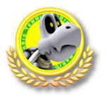 File:MTO- Dry Bones Icon1.png
