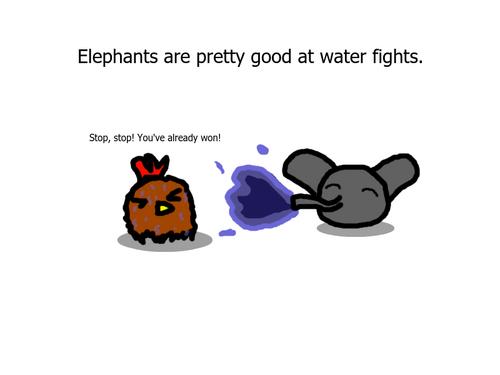 AnimalKingdom1