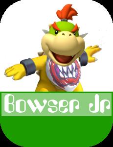 Bowser Jr MR