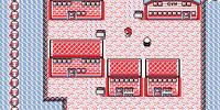 Pokémon Glitch Fighters