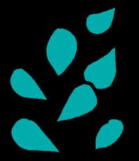 Seeds Cyan