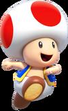 Toad ssbc