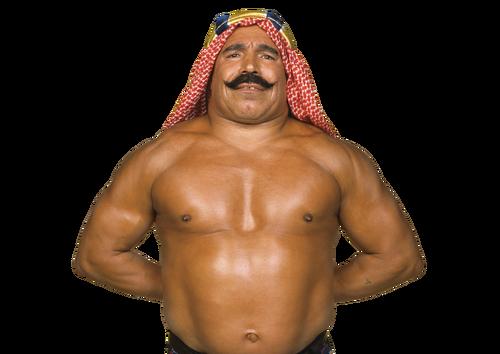 IconThe Iron Sheik