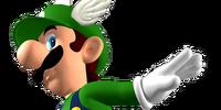 New Super Mario 64 3D/Gallery