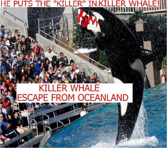 File:Killer Whale Escape from Oceanland.jpg