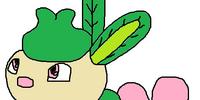 Pokemon Positive and Negative Versions/Pokédex