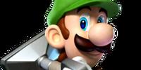 Luigi (SSBCombat)