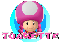 File:ToadetteIcon-MKU.png