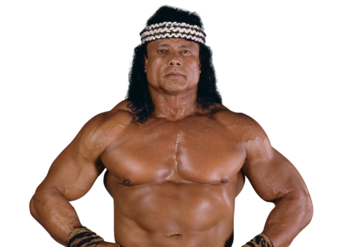 IconJimmy Snuka