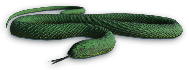 Файл:FC3 cutout snake.png