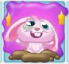 Rob the Rabbit on slime dazed
