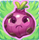 Onion grumpy on grass