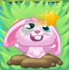 Rob the Rabbit on grass and bridge dazed full