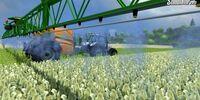 Crops (Farming Simulator 2013)