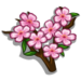Cherry Blossom-icon