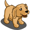 Golden Retriever Puppy-icon