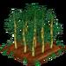 Bamboo 100