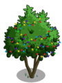 Avocado Tree6-icon.png