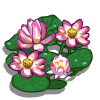 Lotus-icon.png
