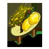 Lemon Tree Mastery Sign-icon