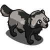 Gray Raccoon Dog-icon