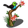 Paradise Tanager-icon