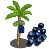Acai Tree-icon.png