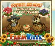 Gophers Garden Loading Screen
